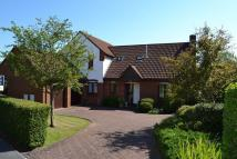 4 bed Detached home in Wilton Close, Street