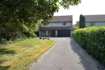5 bed Detached house in Middle Brooks, Street