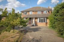 4 bed Detached house to rent in Avenue Road, Epsom