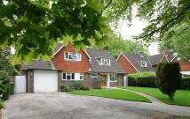 4 bedroom Detached house to rent in Downs Road, Epsom
