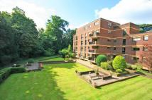 Apartment to rent in Pitt Place, Epsom