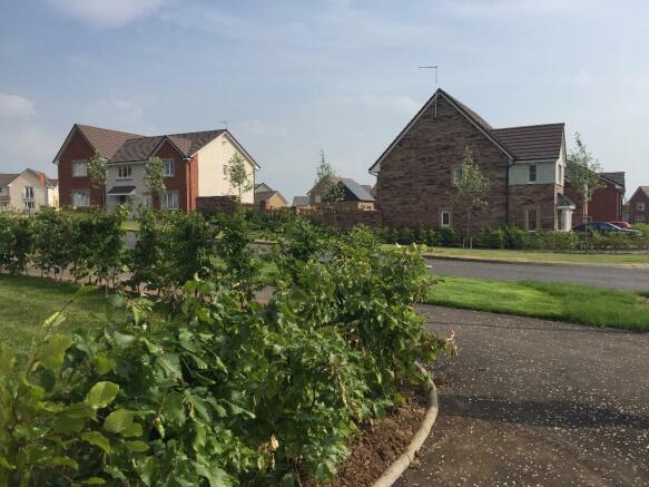 Dual Aspect Homes