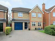 Orpington Road property to rent
