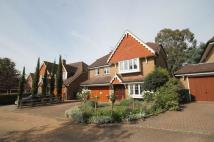 5 bed Detached house to rent in Mayfield, LEATHERHEAD