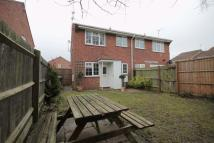 1 bed semi detached property to rent in THRUXTON CLOSE, ALVASTON