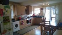 semi detached house to rent in Reginald Road South...