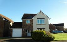 property to rent in 26 Barnhill Road, Dumfries
