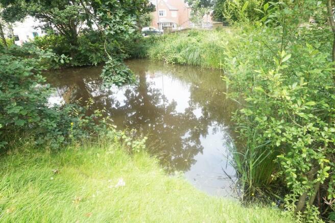 Front Pond.JPG