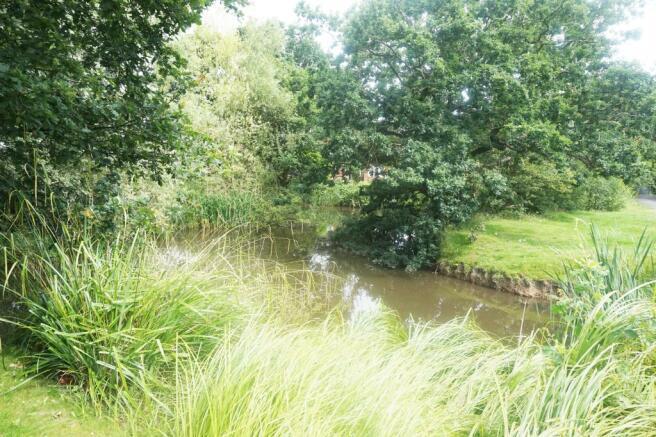 Front Pond1.JPG