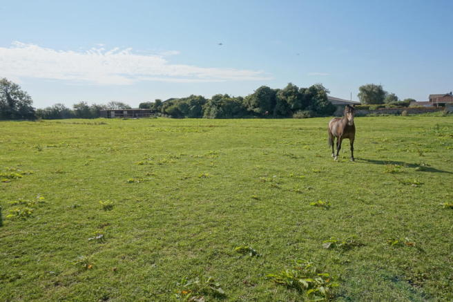 Adjoining rented field