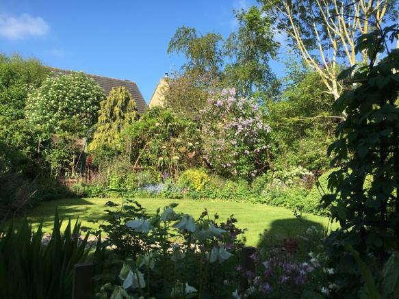 Rear View Garden 4