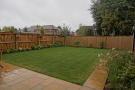 Rear garden - great privacy