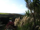 View_to_coast1