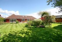 Detached Bungalow for sale in Green Lane, TIPTREE
