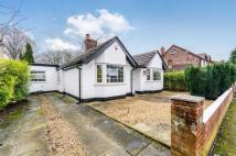 Detached Bungalow to rent in Birtles Road...
