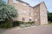 Flat to rent in Osprey Court...