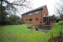 4 bed Detached house in Wynton Rise, STOWMARKET...