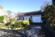 Detached Bungalow for sale in Oakerthorpe Road...