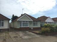 2 bedroom Detached Bungalow to rent in Temple Road, Ipswich...