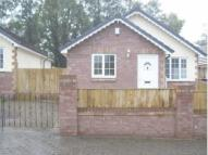 Bungalow to rent in Perth Y Dion, Resolven...