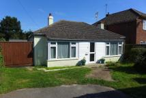 Detached Bungalow in Newmarket Road...