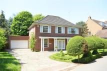 4 bedroom Detached property to rent in Sudbrook Lane, Richmond...