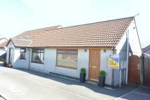 Semi-Detached Bungalow for sale in Liskeard