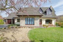 Detached house for sale in St James Close, Hawarden...