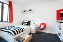 Green Lane Apartment to rent