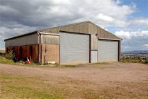 Bere Farm Land