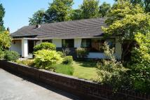 5 bedroom Detached Bungalow for sale in The Elms...
