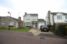 Detached house for sale in Blueburn Drive...