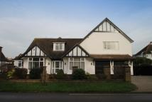 6 bed house in Bushby Avenue...