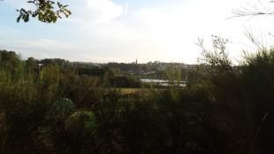 View Top Garden