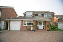Detached house to rent in St. Johns Avenue...