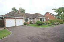 3 bedroom Detached Bungalow to rent in Hatley Drive, CB25