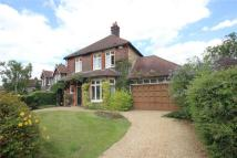 Devonshire Road Detached property to rent
