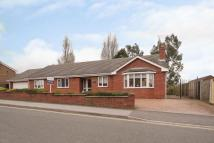 4 bedroom Detached Bungalow for sale in Holly Drive, Forest Town