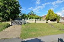 3 bed Detached Bungalow for sale in Avis Road, Newhaven