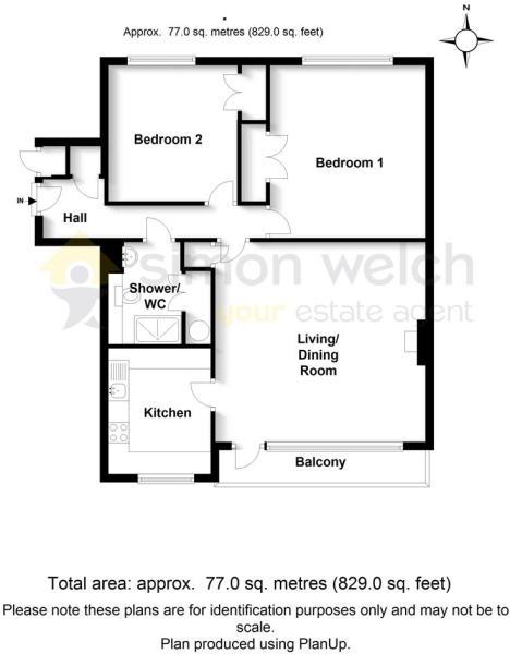 Floor Plan - 11 Dane