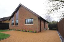 Bungalow for sale in West Drive, Highfields...