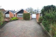 Bungalow for sale in Meadow Lane, Derrington...