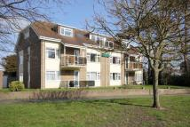 Ground Flat for sale in Falcon Drive...