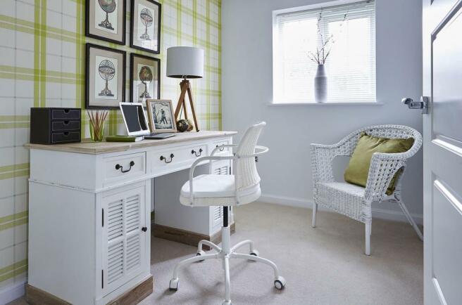 Bowbrook Meadows Alnwick study