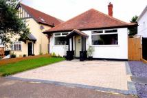 Detached Bungalow for sale in Tower Road, Epping, Essex
