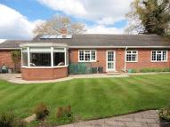 Detached Bungalow to rent in Browns Lane, B93