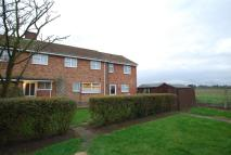 4 bed semi detached house in Oliver Road...