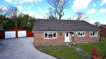 3 bedroom Detached Bungalow in Bryntirion Road, Bagillt...
