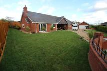4 bed Detached Bungalow for sale in Llys Y Wern, CH7