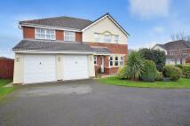Detached property in Highgate Close, Runcorn